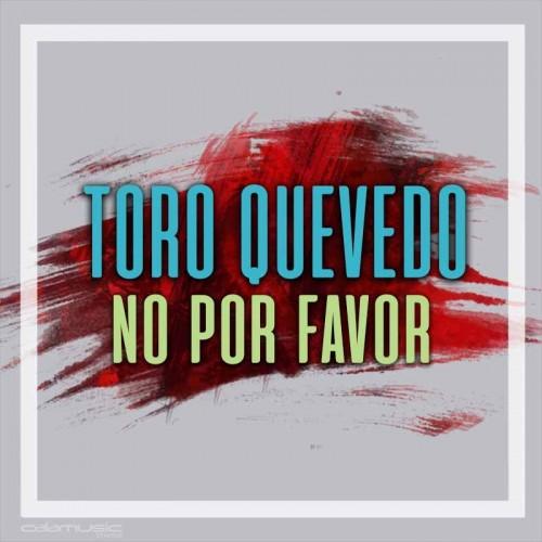TORO QUEVEDO - No por favor  - Pista musical karaoke calamusic