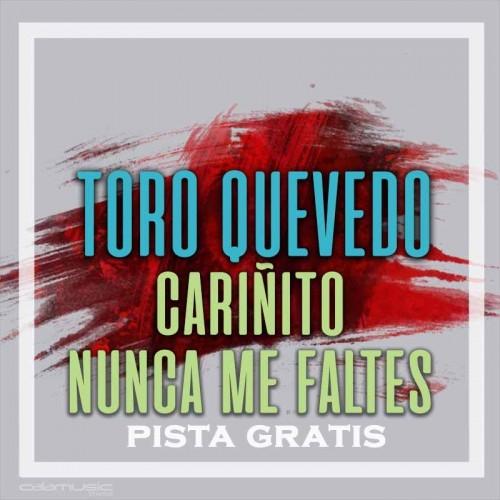 TORO QUEVEDO - Cariñito - Nunca me faltes - Pista musical karaoke calamusic - Gratis