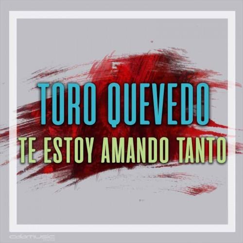 TORO QUEVEDO - Te estoy amando tanto - Pista musical karaoke calamusic