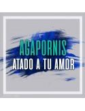 ALEXANDRE PIRES - Usted se me llevo la vida Calamusic studio