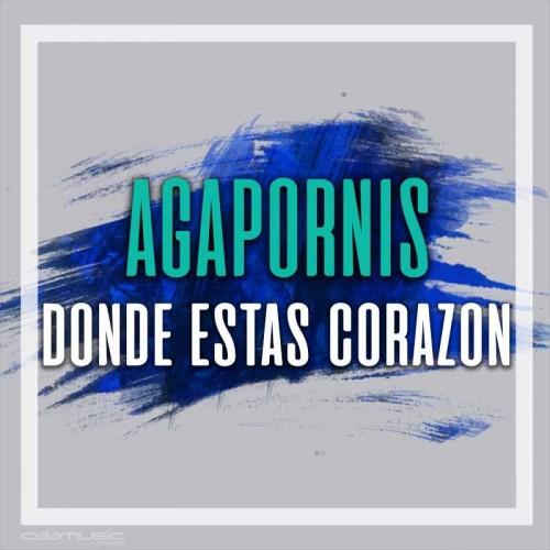 AGAPORNIS - Donde estas corazon - Pista musical karaoke calamusic