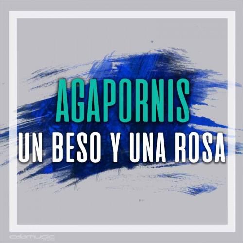 AGAPORNIS - Un beso y una rosa   - Pista musical karaoke calamusic